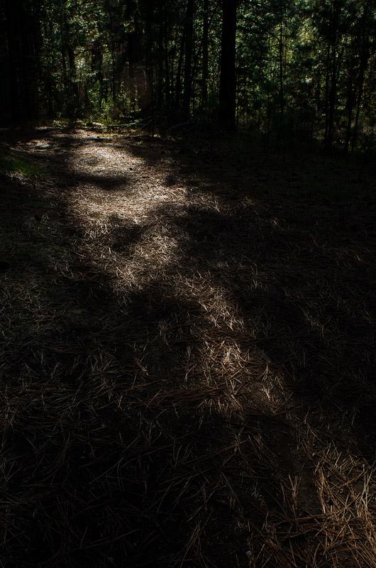 2012-joekline-02