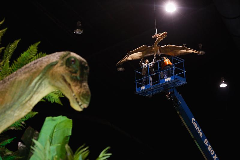 2013-dinosaurexhibit01
