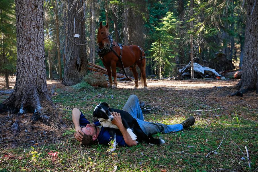 2014_10_horselogger66