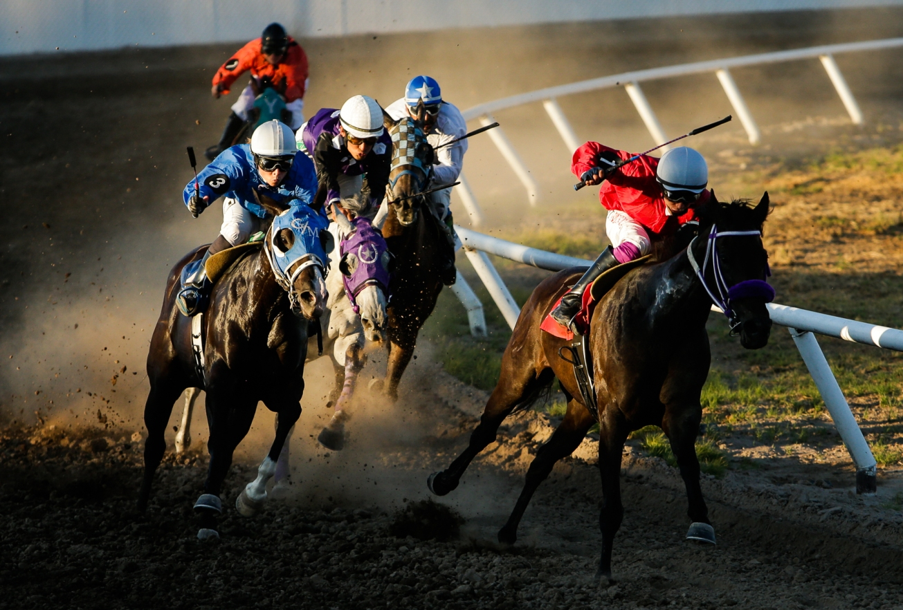 2017_07_horserace09